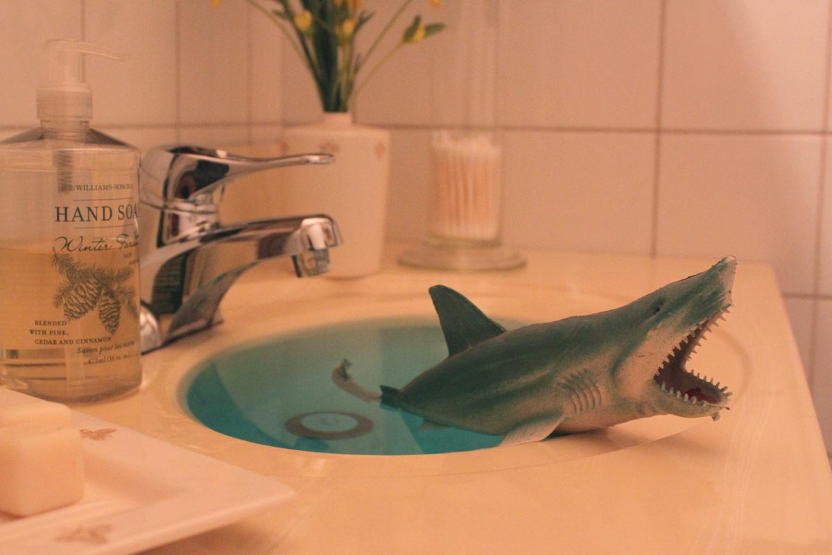 sharksink